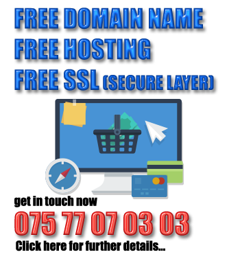 free-domain-hosting-ecommerce1
